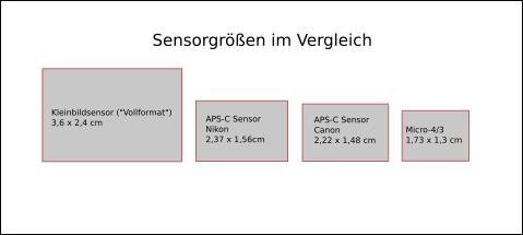 Kamera für Anfänger und Einsteiger der Fotografie: Das Bild zeigt verschiedene Sensorgrößen im Vergleich. Die meisten Anfängerkameras haben übrigens einen Sensor im APS-C Format.